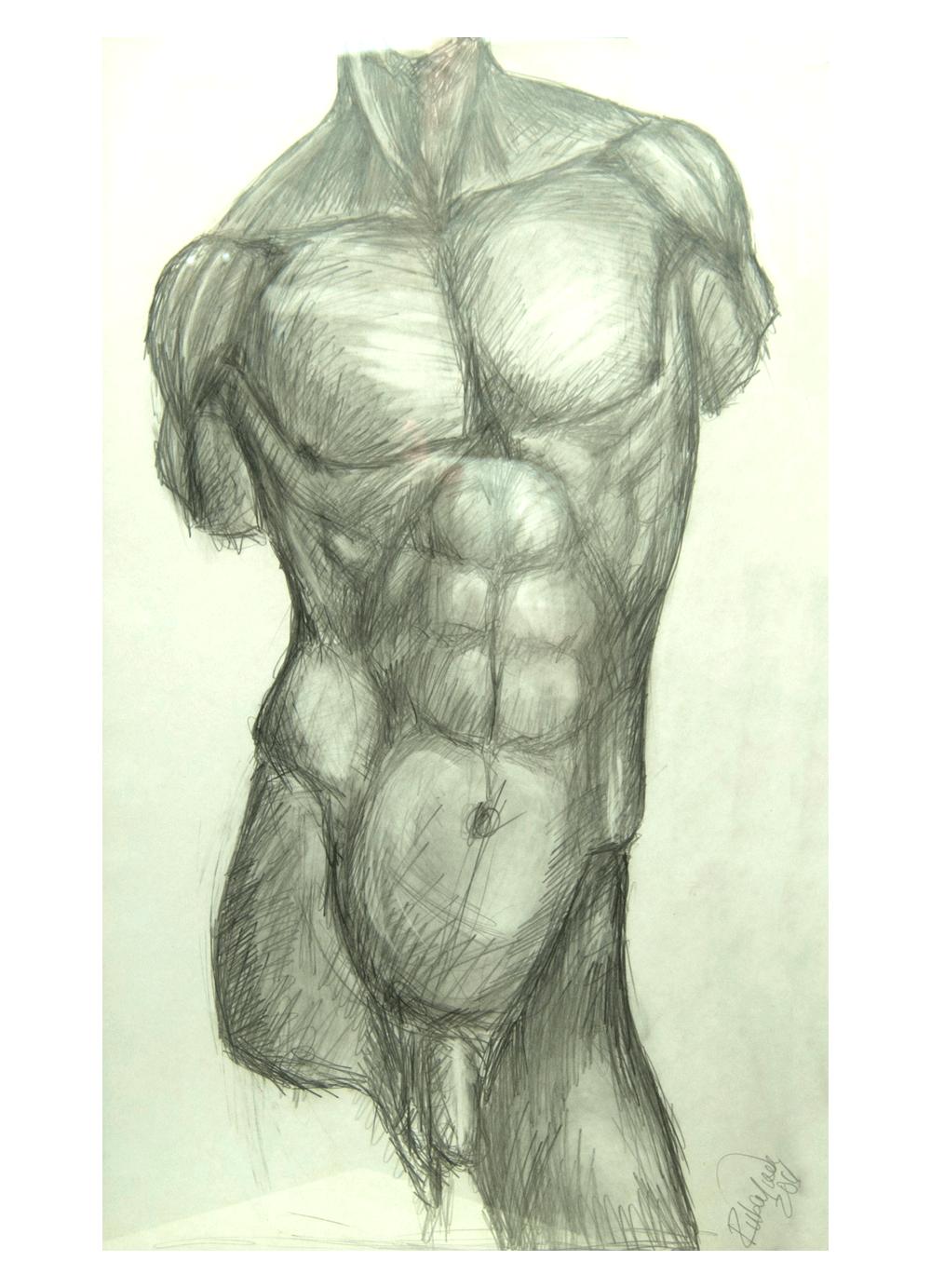 Dibujo-Torso-Masculino-RD.Escultor